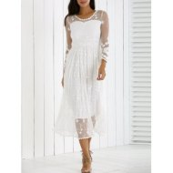 DL Mesh Laciness Dress