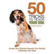 Walmart Dog Tricks